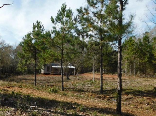 1404 An County Road 164, Elkhart, TX 75839 (MLS #13990665) :: Team Tiller