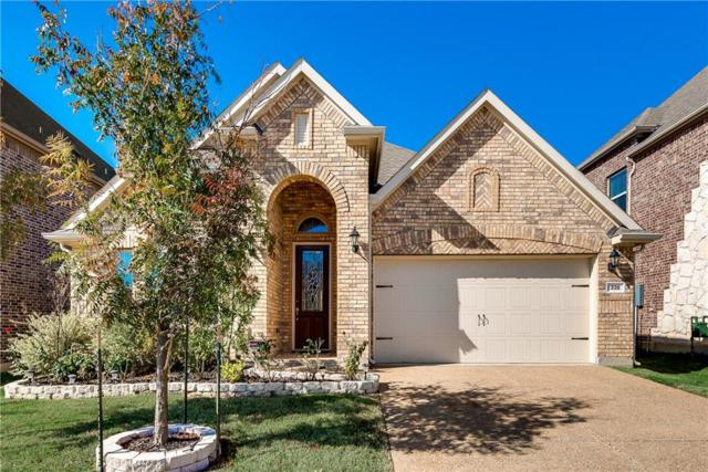 338 Wyndale Drive, Lewisville, TX 75056 (MLS #13991738) :: RE/MAX Pinnacle Group REALTORS
