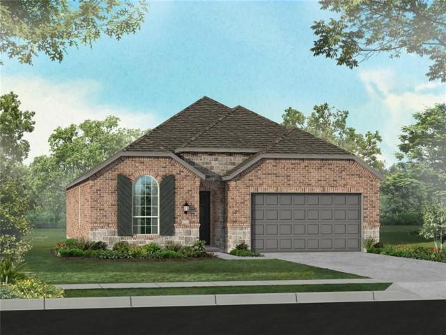 1432 Cherry Blossom Lane, Celina, TX 75009 (MLS #13992296) :: Real Estate By Design