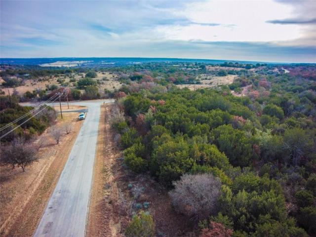 175 Lanyard Drive, Bluff Dale, TX 76433 (MLS #13992488) :: The Real Estate Station