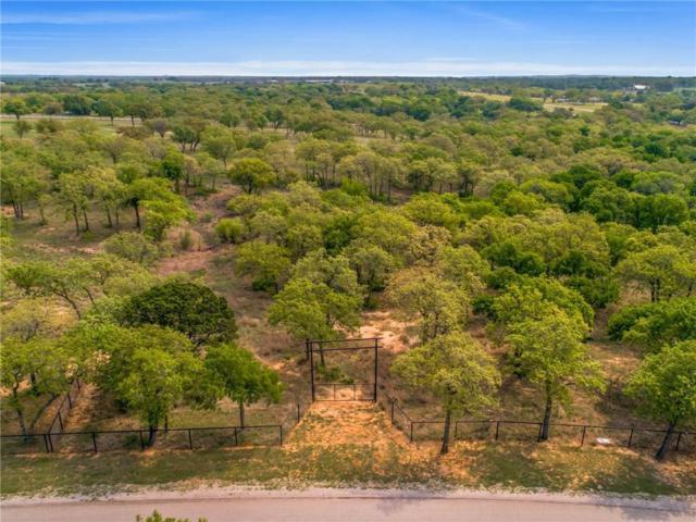 Lot 9 Silver Saddle Circle, Weatherford, TX 76087 (MLS #13993881) :: The Heyl Group at Keller Williams