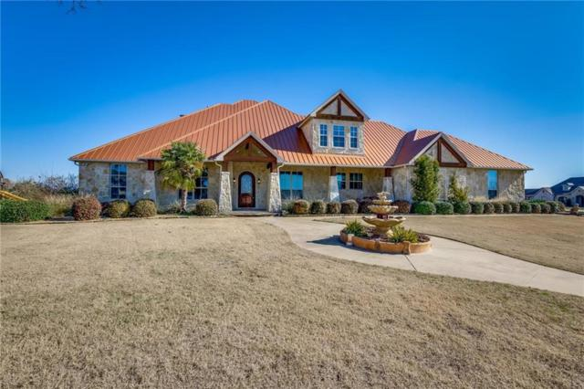 18022 Coolmeadow Lane, Forney, TX 75126 (MLS #13994112) :: RE/MAX Landmark