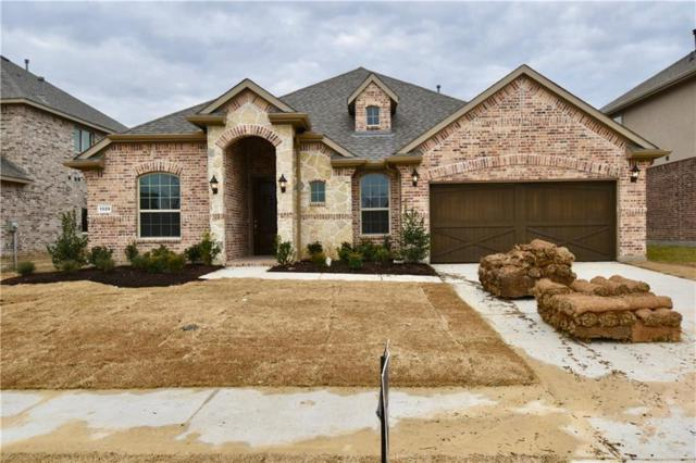 1329 Marines Drive, Little Elm, TX 75068 (MLS #13994163) :: Kimberly Davis & Associates
