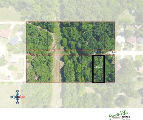 11521 Oak Tree Road, Balch Springs, TX 75180 (MLS #13994171) :: The Heyl Group at Keller Williams