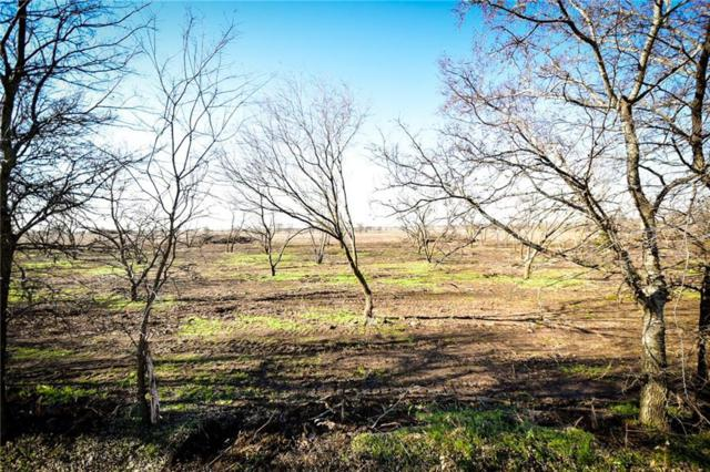 TBA Cr 1205, Lot 4, Rio Vista, TX 76093 (MLS #13994367) :: The Mitchell Group