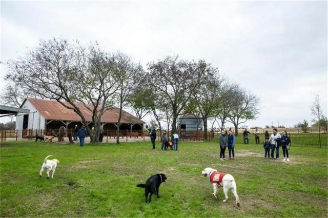 3719 Birch Wood Court, Flower Mound, TX 76226 (MLS #13996598) :: Real Estate By Design