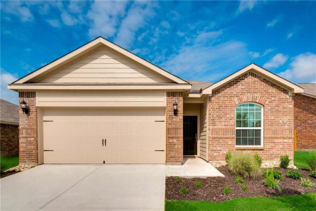 1610 Park Trails Boulevard, Princeton, TX 75407 (MLS #13996718) :: The Good Home Team