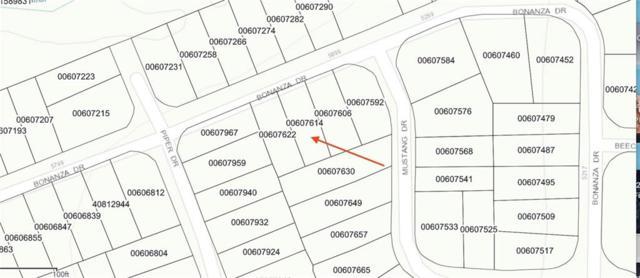 5812 Bonanza Drive #218, Haltom City, TX 76137 (MLS #13998123) :: The Heyl Group at Keller Williams