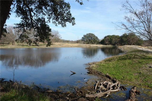 TBD W 84 Highway, Goldthwaite, TX 76844 (MLS #13998435) :: Robbins Real Estate Group