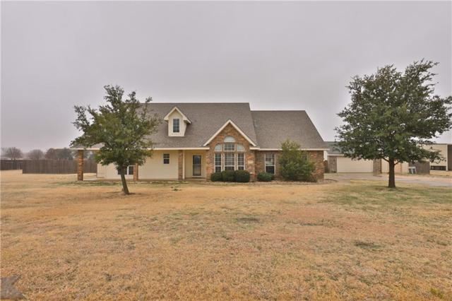 249 Tweetie Pie Lane, Abilene, TX 79602 (MLS #13998685) :: RE/MAX Landmark