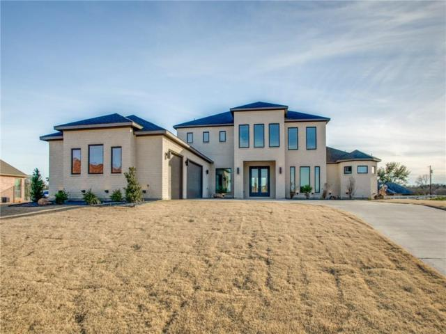 908 Eagle Point Drive, Desoto, TX 75115 (MLS #13999037) :: The Real Estate Station