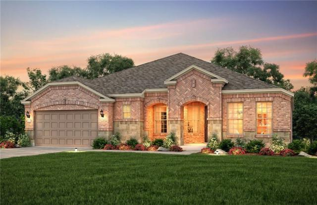 1720 Marina Point Court, Frisco, TX 75036 (MLS #13999219) :: Kimberly Davis & Associates