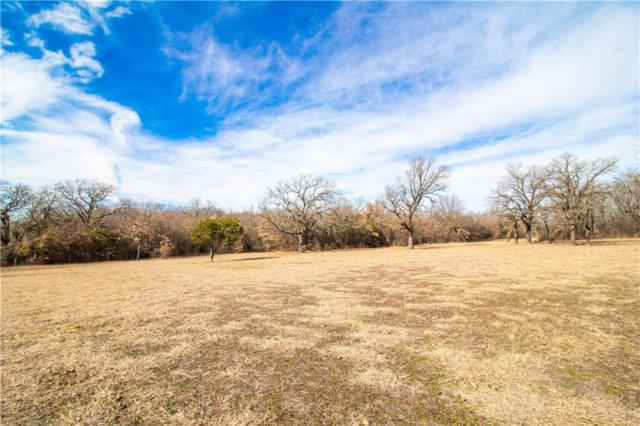 383 Spring Valley Road, Paradise, TX 76073 (MLS #13999279) :: The Heyl Group at Keller Williams