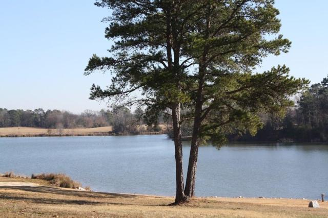 Lot 17 Pr 2320, Pittsburg, TX 75686 (MLS #13999295) :: The Heyl Group at Keller Williams