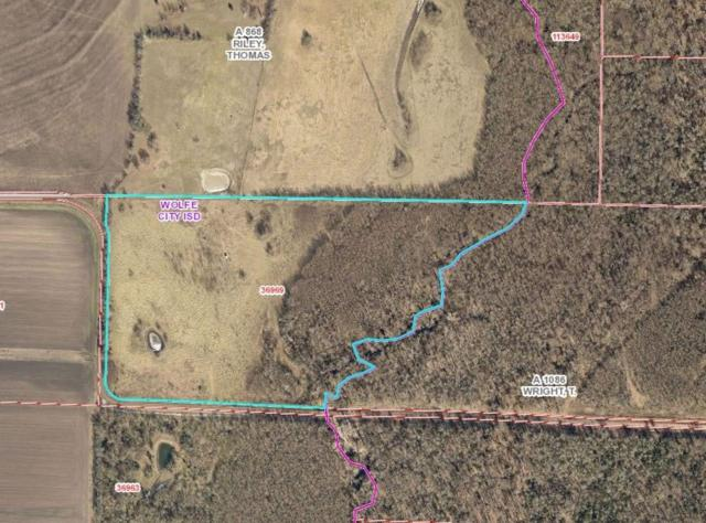 27 acs County Rd 4701, Wolfe City, TX 75496 (MLS #13999648) :: The Heyl Group at Keller Williams