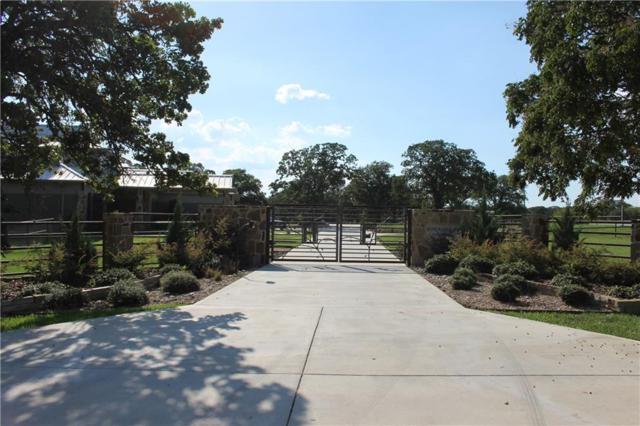 4581 Red Rock Lane, Flower Mound, TX 75022 (MLS #14000046) :: Real Estate By Design