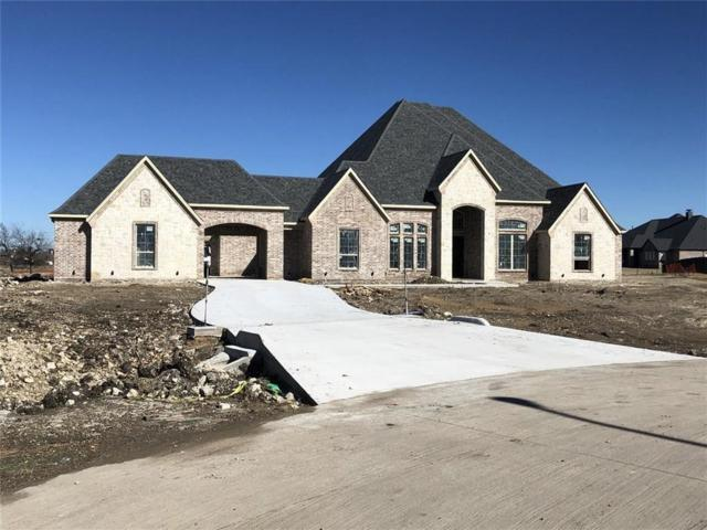 4403 Salisbury Drive, Parker, TX 75002 (MLS #14000630) :: RE/MAX Town & Country