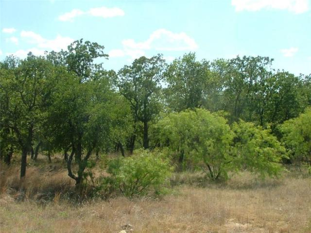L 196 Ridgeline Drive, Chico, TX 76431 (MLS #14001283) :: The Real Estate Station