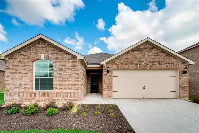 1614 Twin Hills Way, Princeton, TX 75407 (MLS #14001382) :: The Good Home Team