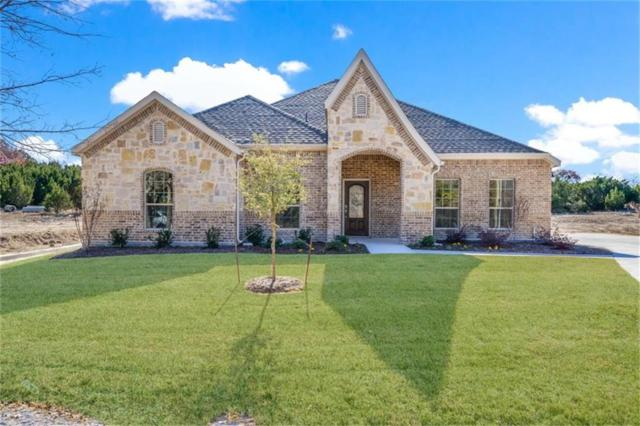 2710 Sonora Canyon Road, Weatherford, TX 76087 (MLS #14001696) :: Kimberly Davis & Associates