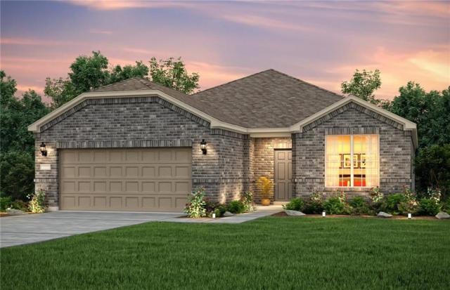 2010 Harbor Pointe Drive, Frisco, TX 75036 (MLS #14001858) :: Kimberly Davis & Associates