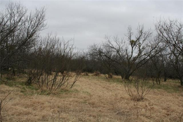 TBD County Road 112, Clyde, TX 79510 (MLS #14002613) :: Magnolia Realty