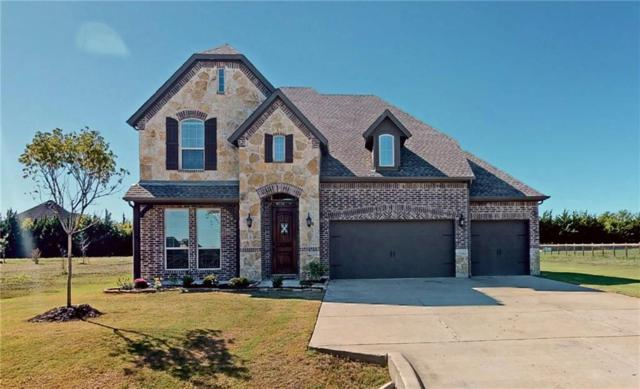 8008 Meadow Glen Drive, Mckinney, TX 75071 (MLS #14002709) :: Kimberly Davis & Associates