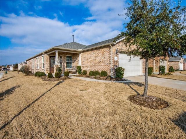 382 Balboa Court, Frisco, TX 75036 (MLS #14002903) :: Team Hodnett