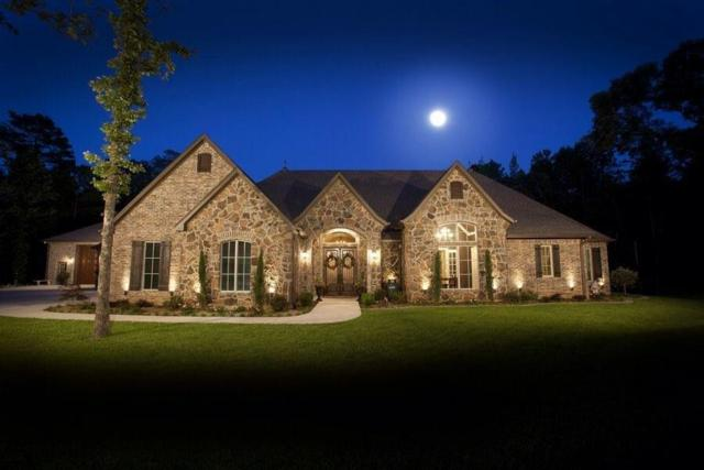 15030 Canopy Oaks Drive, Tyler, TX 75707 (MLS #14003029) :: Kimberly Davis & Associates