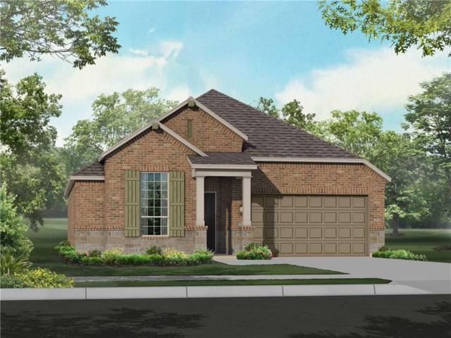 1532 Yellowthroat Drive, Little Elm, TX 75068 (MLS #14003385) :: Kimberly Davis & Associates
