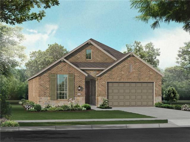 2820 Prairie Trail Avenue, Aubrey, TX 76227 (MLS #14003718) :: Kimberly Davis & Associates