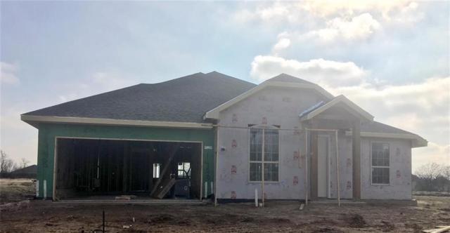 1400 Oak Tree Drive, Denton, TX 76209 (MLS #14003945) :: Real Estate By Design