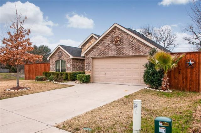228 Commonwealth Circle, Waxahachie, TX 75165 (MLS #14004385) :: The Sarah Padgett Team