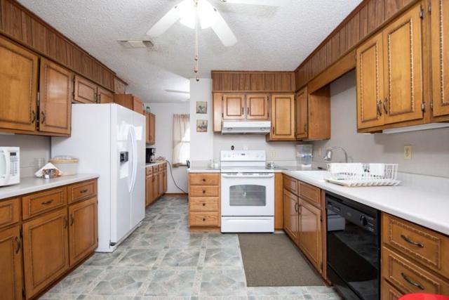 1163 Farm Road 2118, Bagwell, TX 75412 (MLS #14004393) :: The Heyl Group at Keller Williams