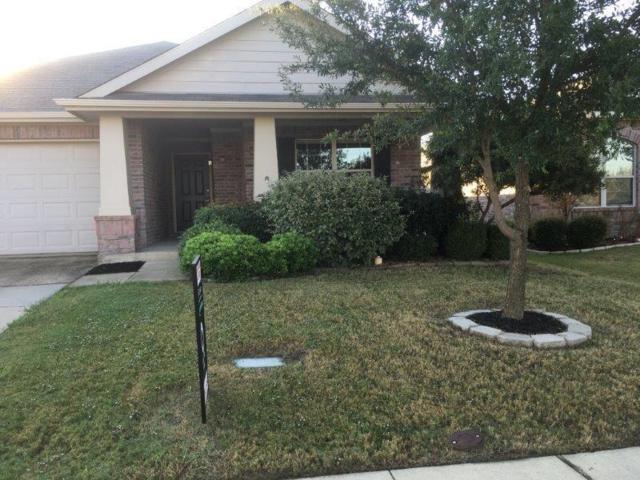 2004 Zavala, Forney, TX 75126 (MLS #14004566) :: RE/MAX Landmark