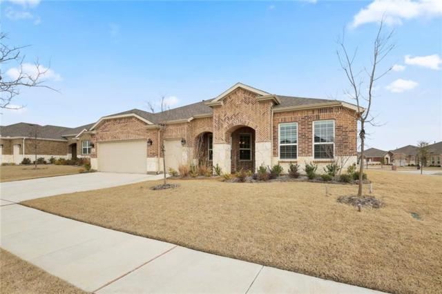 6410 Walnut Hill Court, Frisco, TX 75036 (MLS #14004903) :: Team Hodnett