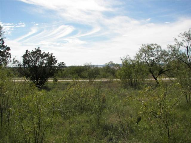 Lt1043 Frog Branch Court, Possum Kingdom Lake, TX 76449 (MLS #14004921) :: The Heyl Group at Keller Williams