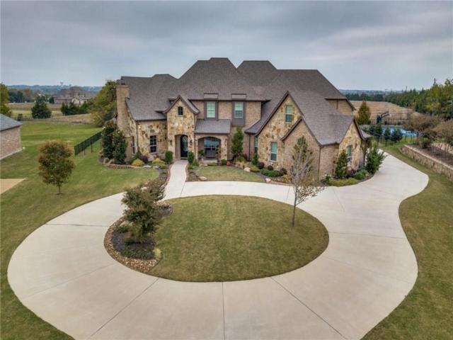 128 Old Vineyard Lane, Heath, TX 75032 (MLS #14005657) :: Baldree Home Team