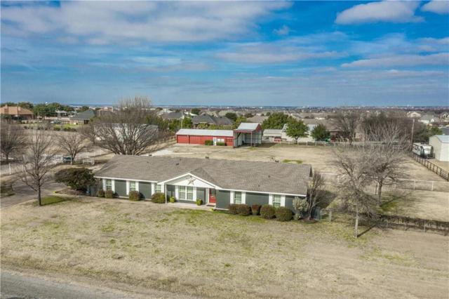 8770 Prestonview Drive, Prosper, TX 75078 (MLS #14005718) :: Vibrant Real Estate