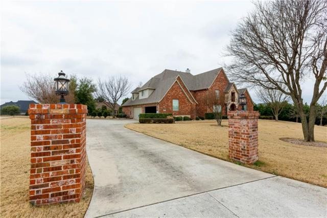 4006 Glen Meadows Drive, Parker, TX 75002 (MLS #14005761) :: RE/MAX Town & Country