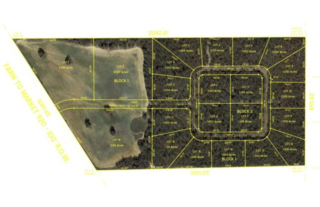 0015 Timbers Circle, Poolville, TX 76487 (MLS #14006064) :: The Real Estate Station