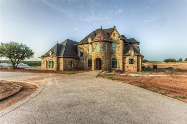 220 Reata Ranch Drive, Peaster, TX 76088 (MLS #14007048) :: Robinson Clay Team