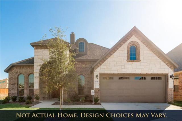 407 Foxtail Court, Waxahachie, TX 75165 (MLS #14008289) :: North Texas Team | RE/MAX Lifestyle Property