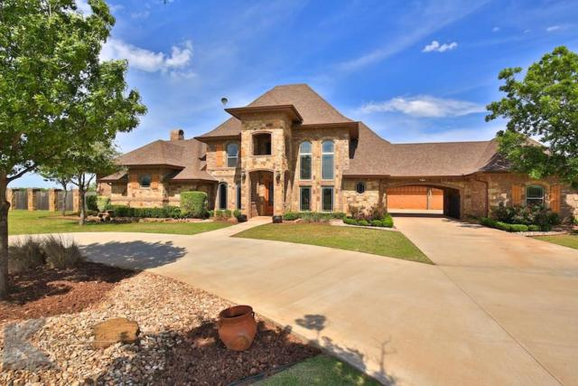 341 Southwind Circle, Abilene, TX 79602 (MLS #14008462) :: The Paula Jones Team | RE/MAX of Abilene