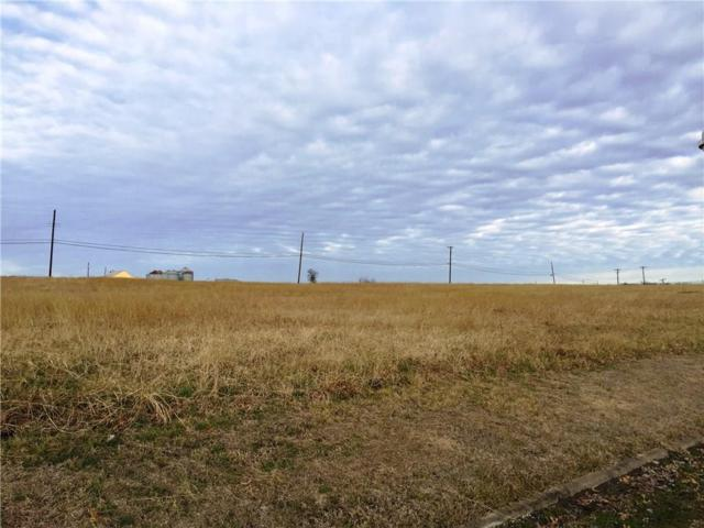 3+ AC Western Hills Drive, Howe, TX 75459 (MLS #14009528) :: North Texas Team | RE/MAX Lifestyle Property