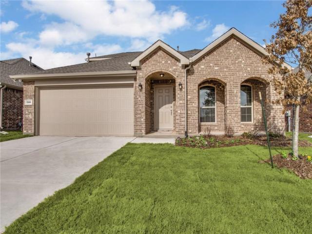 1306 Timberfalls Drive, Anna, TX 75409 (MLS #14009662) :: RE/MAX Landmark