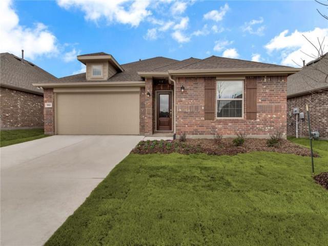 1302 Timberfalls Drive, Anna, TX 75409 (MLS #14009857) :: RE/MAX Landmark