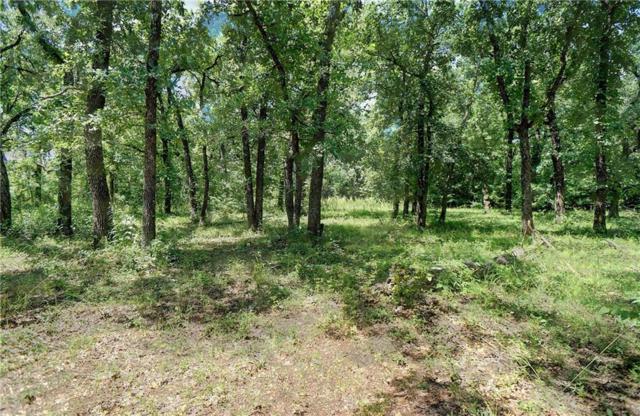 2929 SE Sagebrush Drive, Flower Mound, TX 75022 (MLS #14010404) :: RE/MAX Town & Country