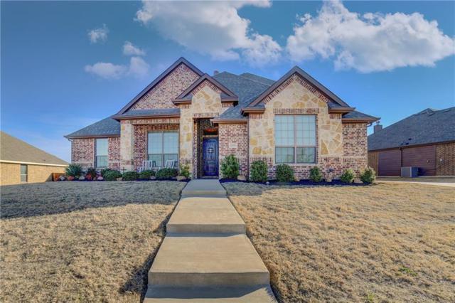 3206 Meadow Ridge Drive, Midlothian, TX 76065 (MLS #14010462) :: RE/MAX Landmark