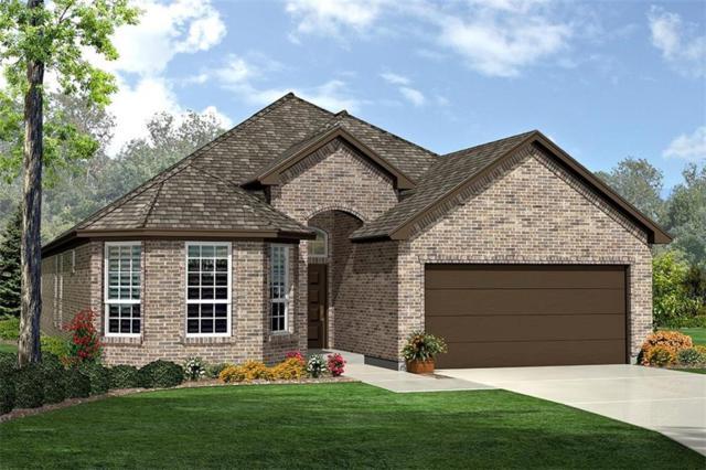 3925 Esker Drive, Fort Worth, TX 76137 (MLS #14011153) :: RE/MAX Landmark